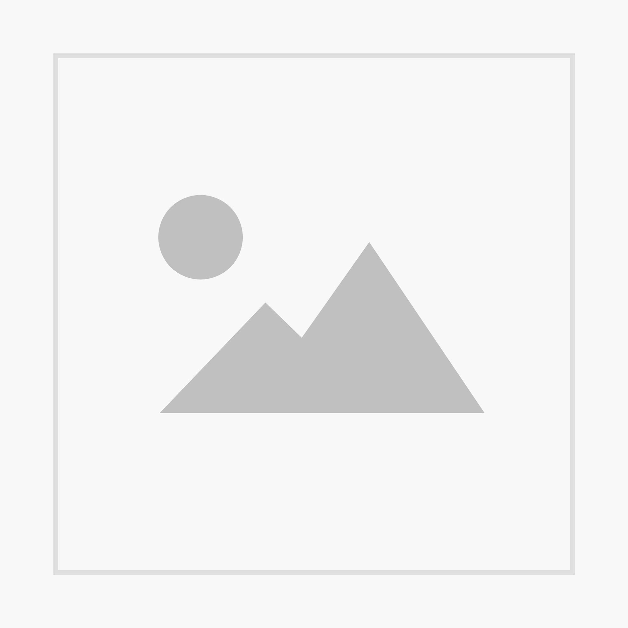 bauernkind x Wochenblatt Edition 1844 Khaki T-Shirt Herren