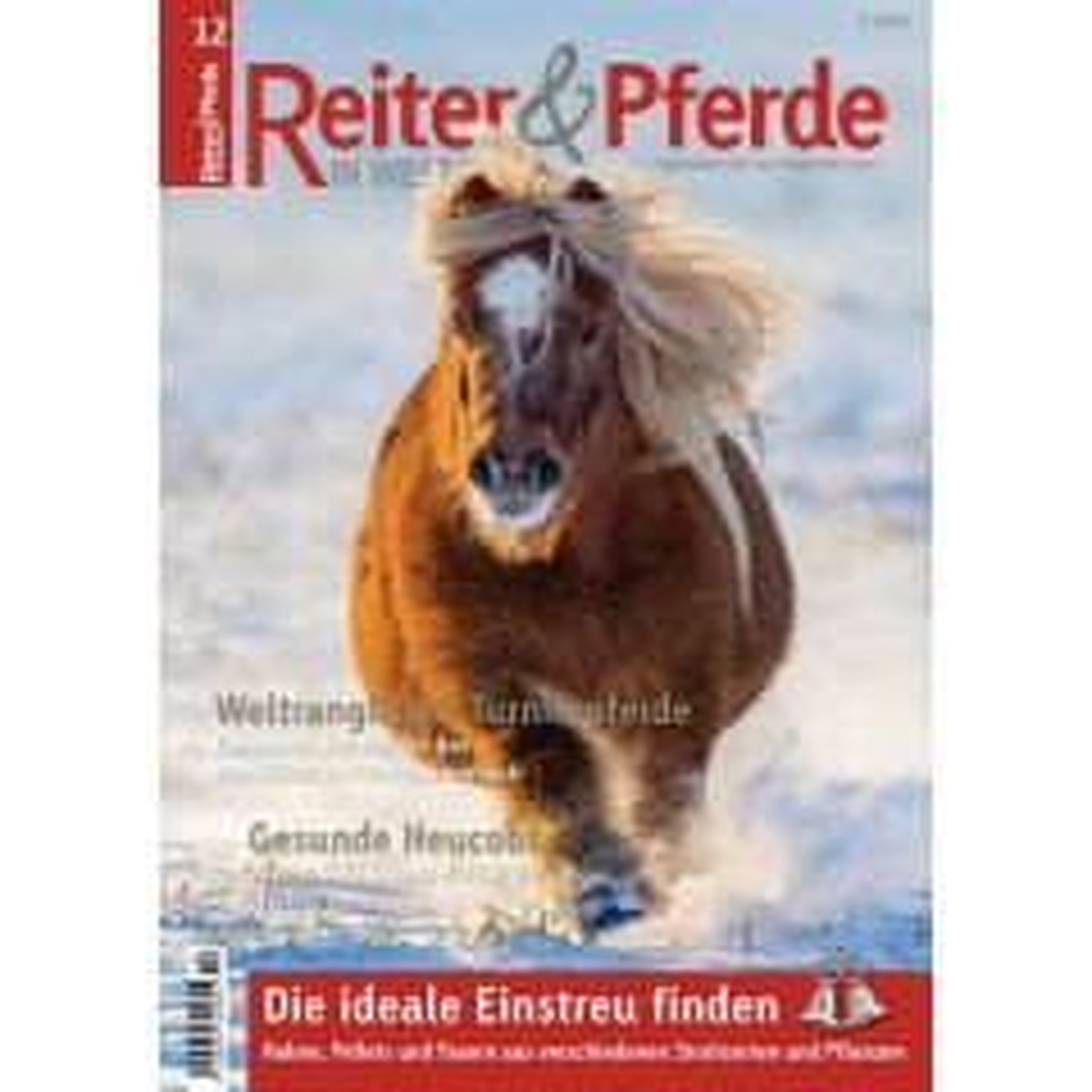 Reiter und Pferde in Westfalen 12/2019